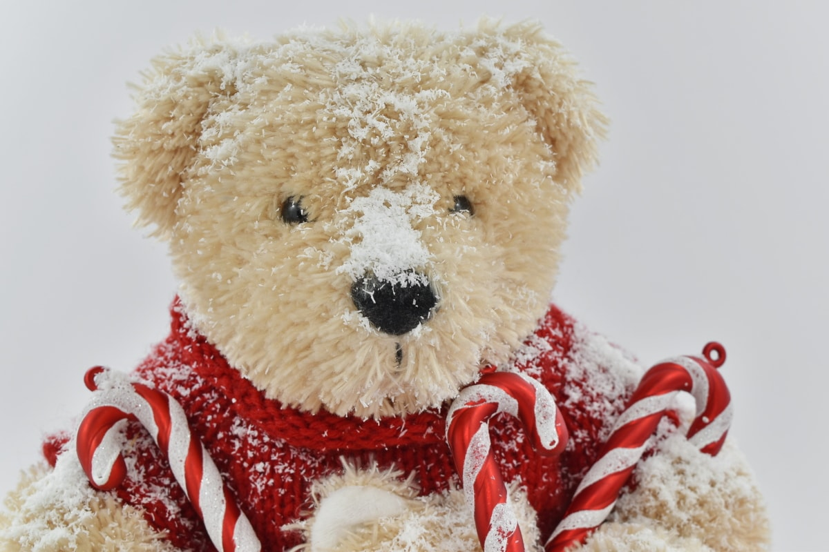 christmas, toy, teddy bear toy, snow, gift, winter, frost, traditional, fun, cold
