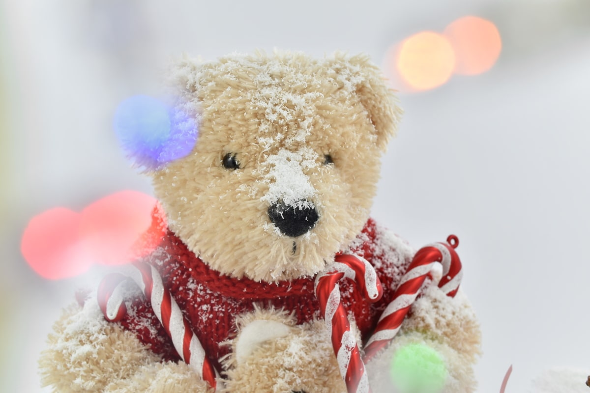 teddy bear toy, toys, toyshop, toy, snow, winter, bear, christmas, cute, traditional