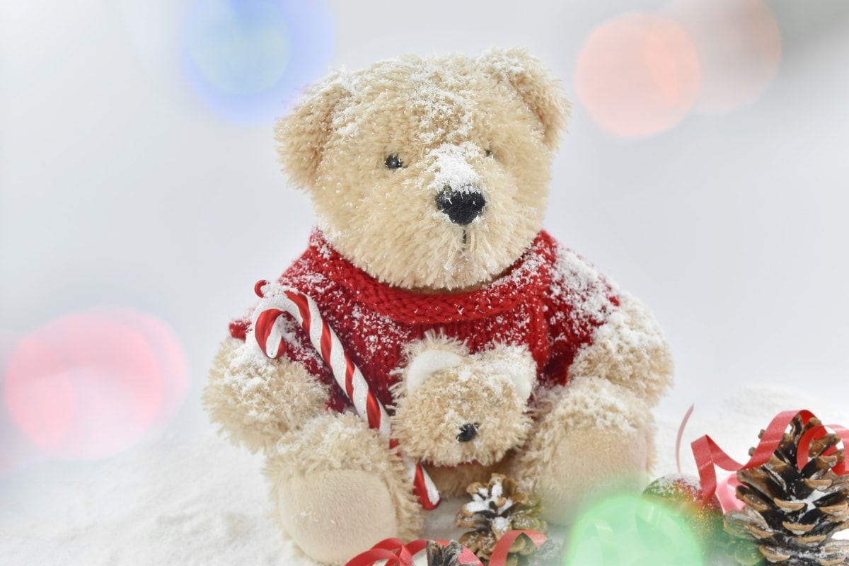 backlight, light, soft, stuffed, teddy bear toy, toys, toyshop, toy, gift, bear