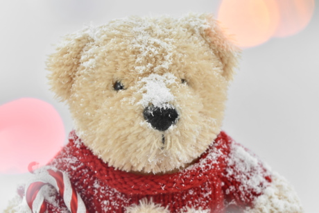 backlight, light, light brown, snow, snowflakes, sweater, teddy bear toy, toy, bear, gift