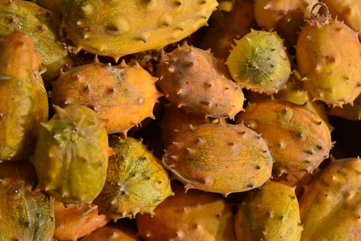 fico d'India, produrre, cibo, frutta, Cactus, natura, trama, delizioso, nutrizione, salute
