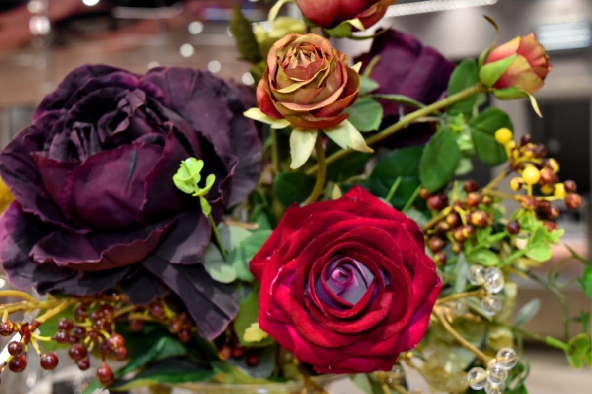 boutique, decoration, purplish, rose, roses, still life, romantic, love, flower, romance