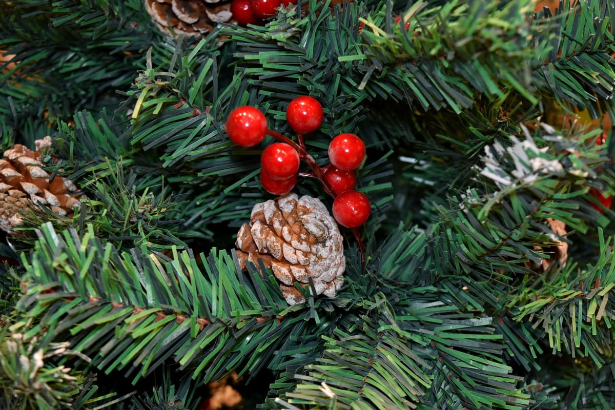 branches, christmas, christmas tree, conifers, decoration, tree, winter, pine, branch, evergreen