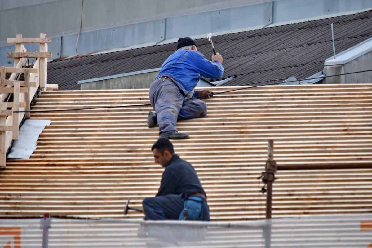 construction worker, engineering, professional, renovation, roof, roofing, man, industry, wood, people
