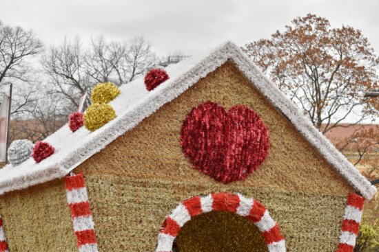 colorful, decoration, heart, house, winter, christmas, traditional, wood, nature, celebration