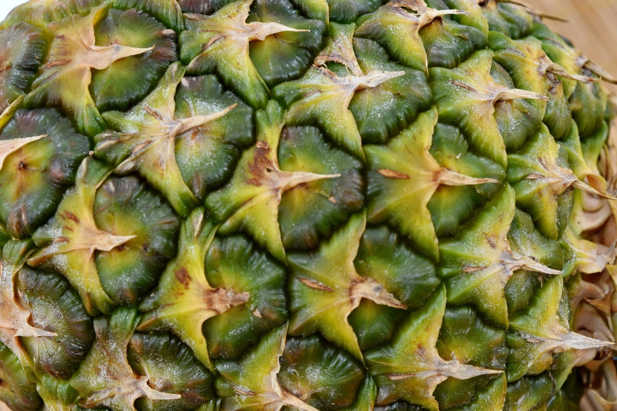 green, greenish yellow, pineapple, texture, healthy, nature, food, fruit, exotic, tropical