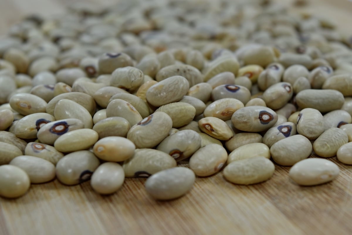 beans, vegetable, ingredients, nutrition, bean, health, dry, food, farming, many