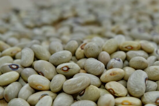 beans, close-up, seed, vegetables, bean, nutrition, food, ingredients, health, dry
