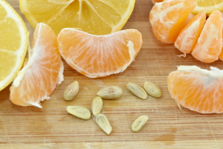 lemon, seed, slices, tangerine, fruit, citrus, health, food, mandarin, wood