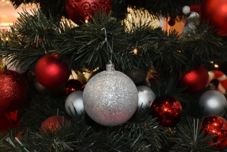 celebration, christmas tree, holiday, interior decoration, ornament, pretty, sphere, tradition, christmas, tree