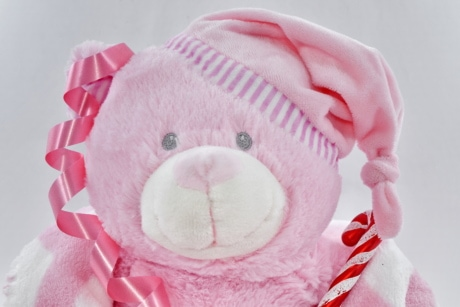 anniversary, celebration, party, plush, teddy bear toy, toy, pink, fun, cute, scarf