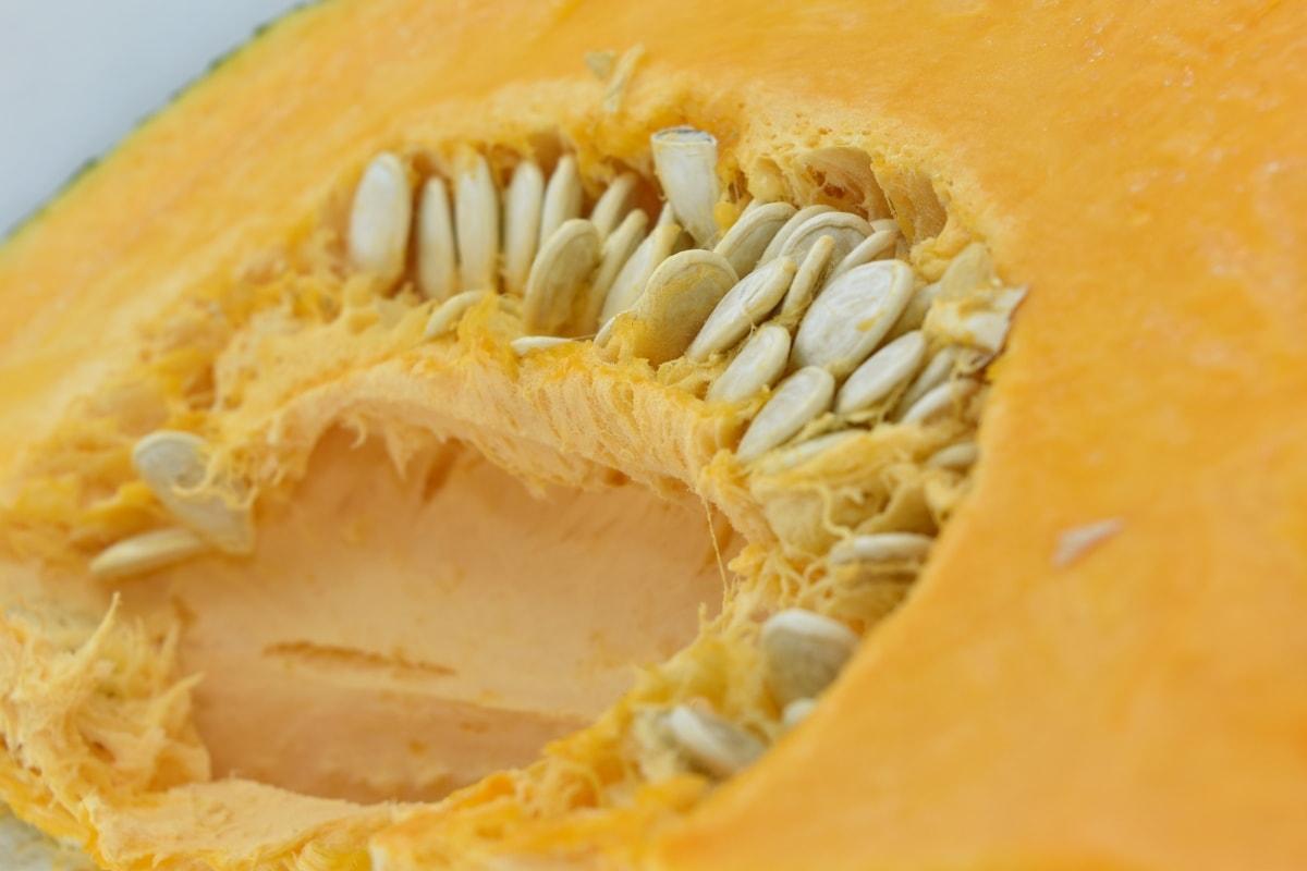 details, pumpkin seed, vegan, pumpkin, squash, food, vegetable, nutrition, health, thanksgiving