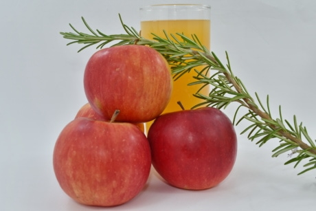apples, branches, fruit juice, organic, rosemary, twig, fruit, fresh, delicious, healthy