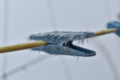 clothesline, freeze, plastic, wire, winter, nature, outdoors, blur, frost, detail