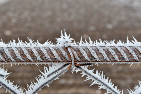barbed wire, cast iron, fence, freeze, frost, frozen, ice crystal, rust, steel, winter