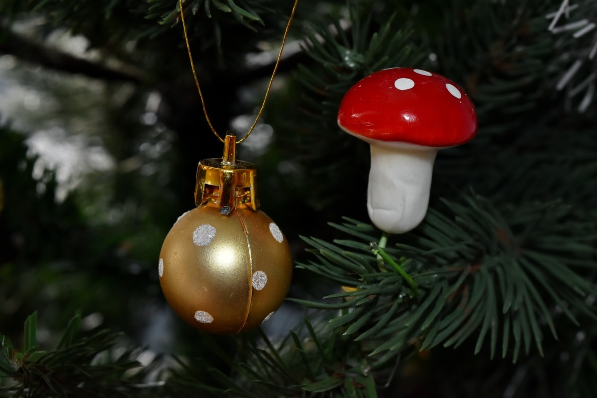 크리스마스 트리, 골든 글로우, 버섯, 빛나는, 크리스마스, 트리, 곰 팡이, 매달려, 겨울, 장식