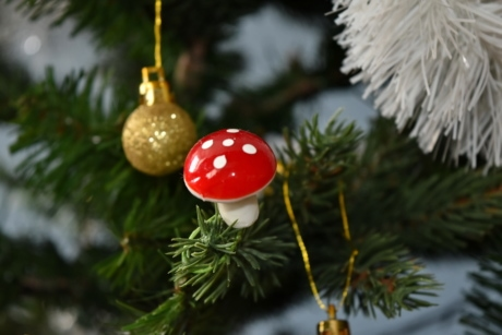 christmas, christmas tree, decoration, mushroom, hanging, shining, pine, evergreen, winter, conifer