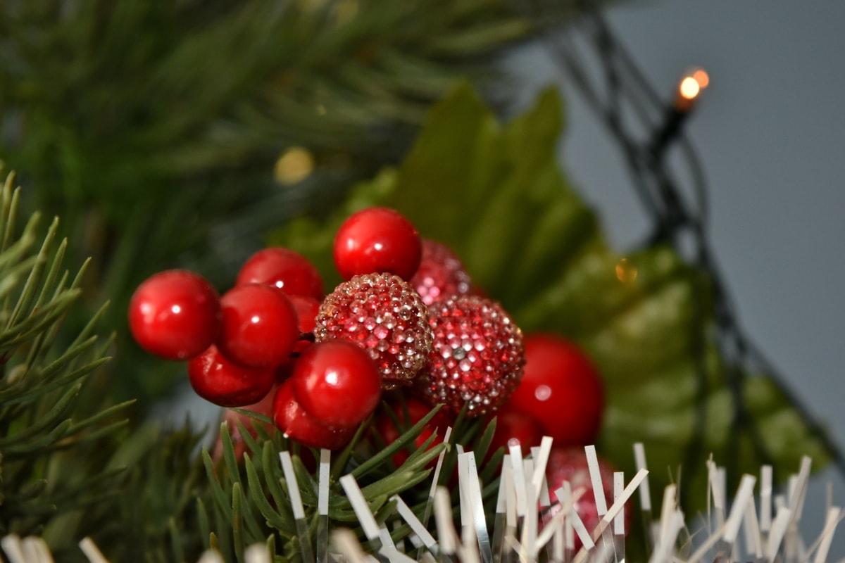 크리스마스 트리, 트리, 빛나는, 딸기, 달콤한, 관목, 공장, 겨울, 크리스마스, 베리