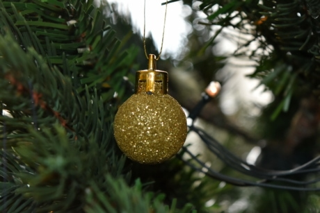 christmas, christmas tree, golden glow, golden shiner, reflection, sphere, decoration, shining, winter, hanging