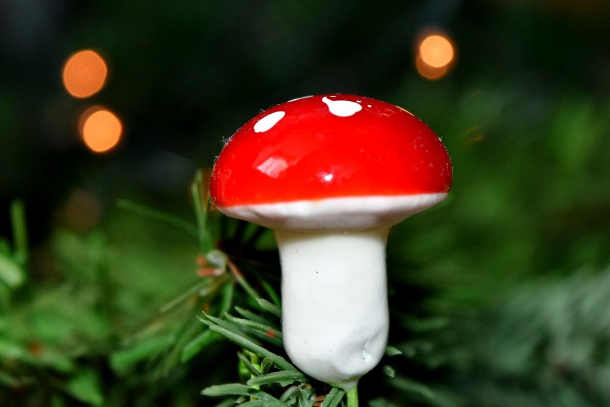 backlit, kerstboom, macro, paddestoel, natuur, zomer, buitenshuis, Kerst, blad, vervagen