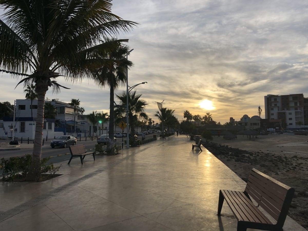 stadsbild, trottoar, gata, solnedgång, tropisk, urban, stol, staden, träd, ljus