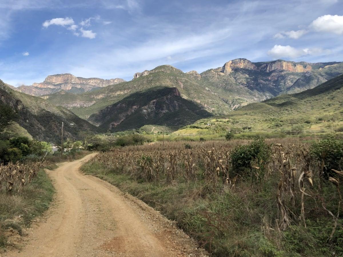L'Asie, champ de maïs, saison sèche, Itinéraire, rural, montagne, montagnes, paysage, haute terre, gamme