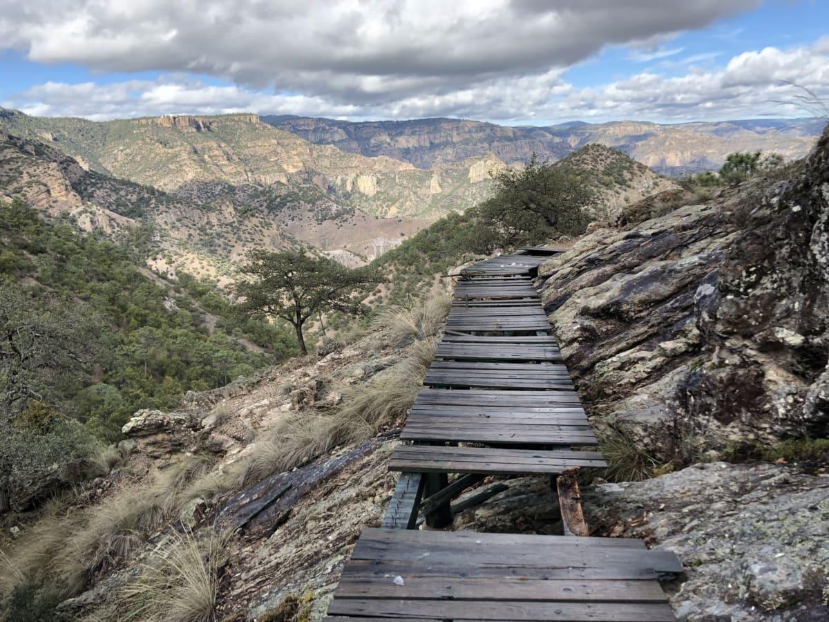 most, nacionalni park, staza, drveni, krajolik, planine, uspon, nagib, priroda, drvo