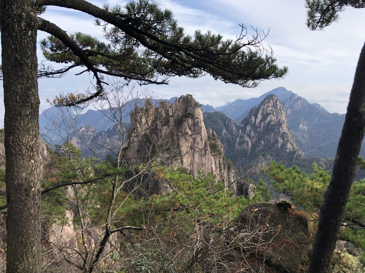 falaise, Forest, épinette blanche, paysage, bois, montagne, arbre, nature, Roche, pin