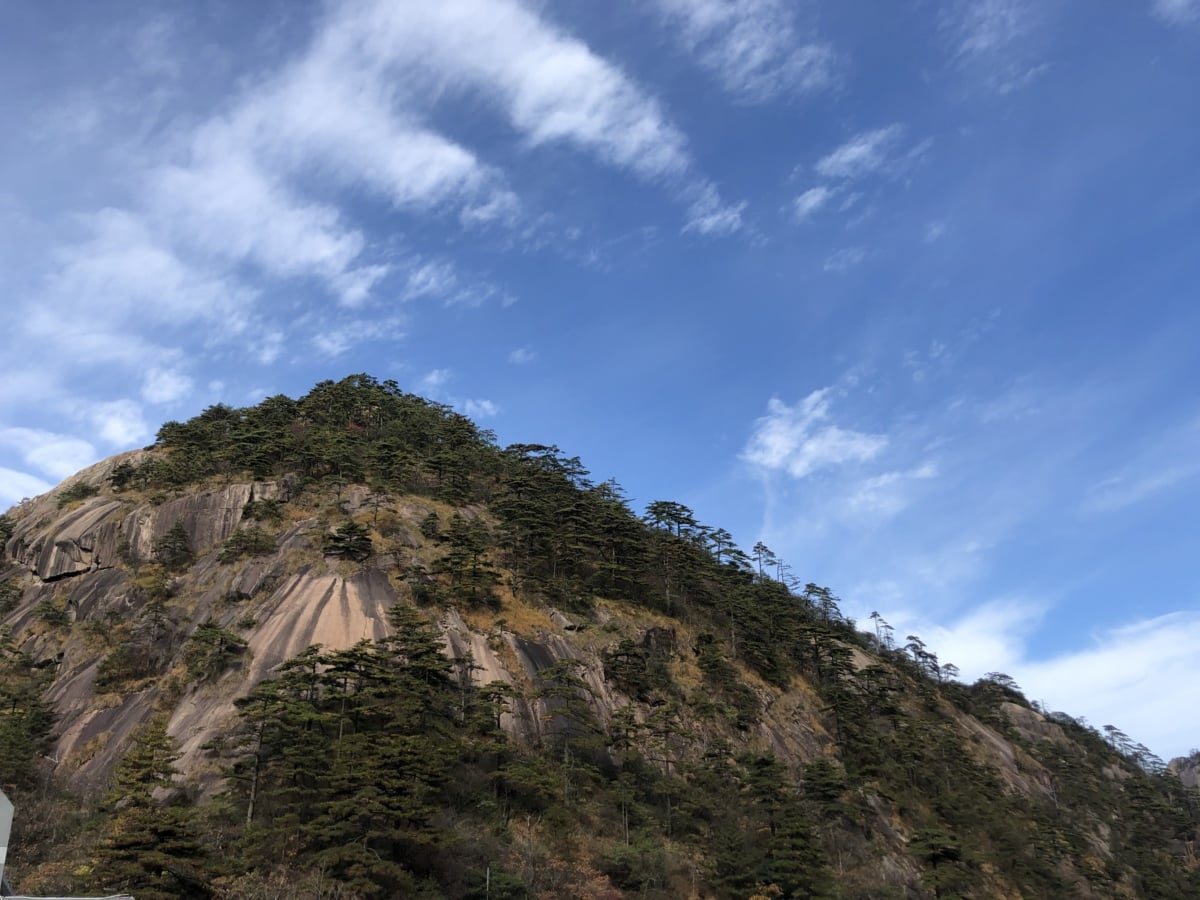 Asia, aspen, cliff, hilltop, knoll, nature, landscape, mountain, outdoors, summer