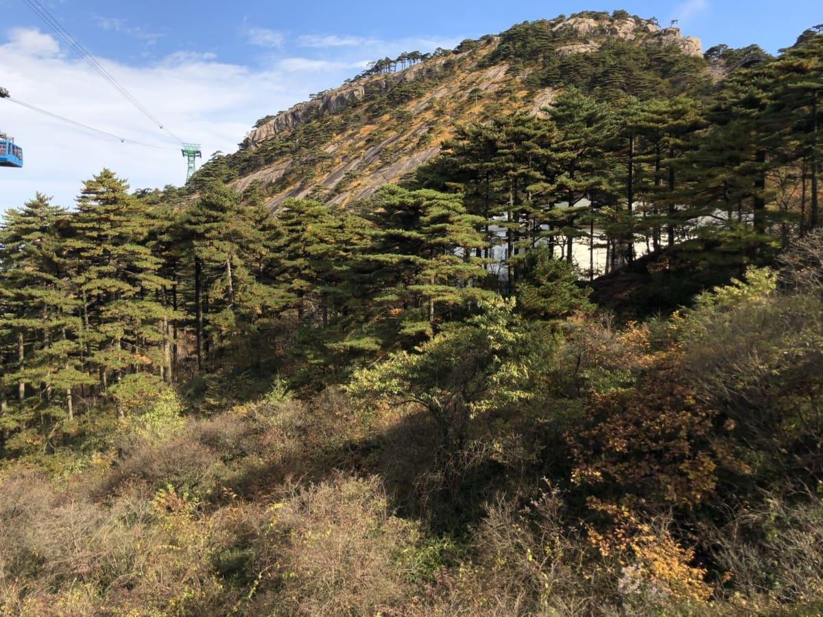 mountain peak, resort, transportation, mountain, high land, landscape, tree, nature, outdoors, wood