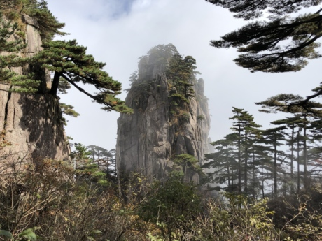 big rocks, cliff, mist, pine, wilderness, nature, forest, tree, landscape, wood