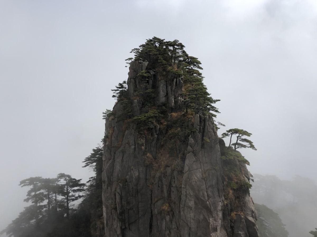 cliff, fog, high land, mountain peak, vertical, tree, nature, landscape, wood, mist