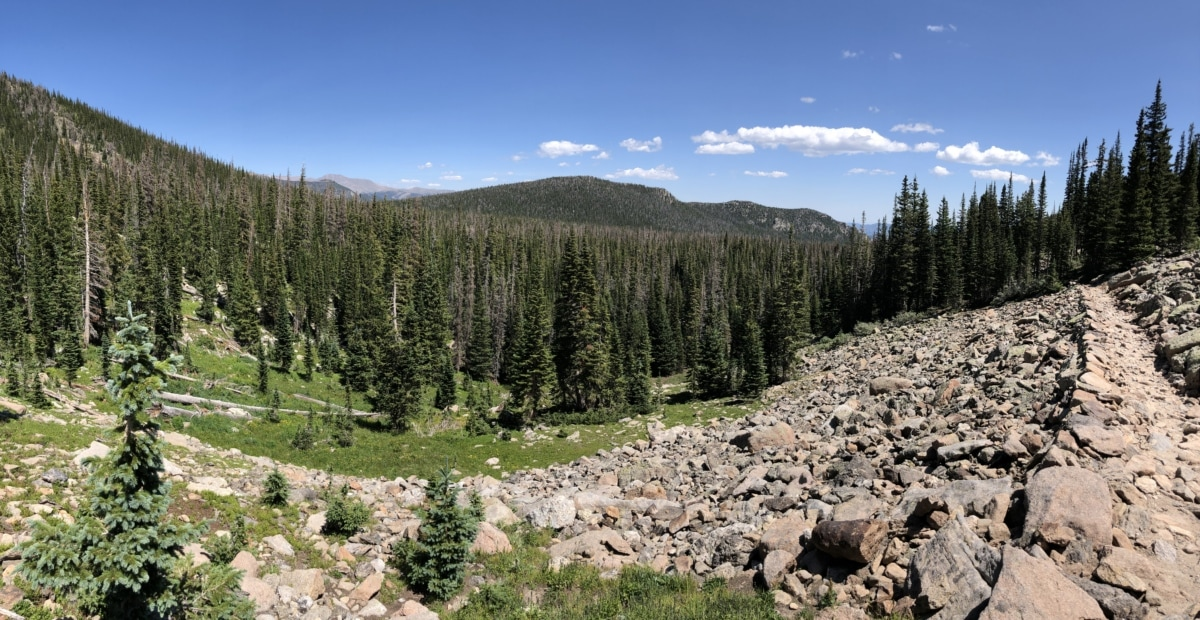 осина, лес, Лесная тропа, скалы, камни, долина, диапазон, дерево, горы, природа