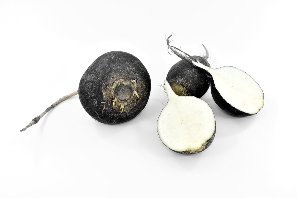 black and white, radish, root, vegetable, food, nutrition, farming, whole, cooking, flora
