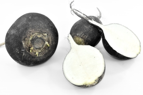 black, cross section, diet, dietary, organic, radish, food, nature, health, leaf