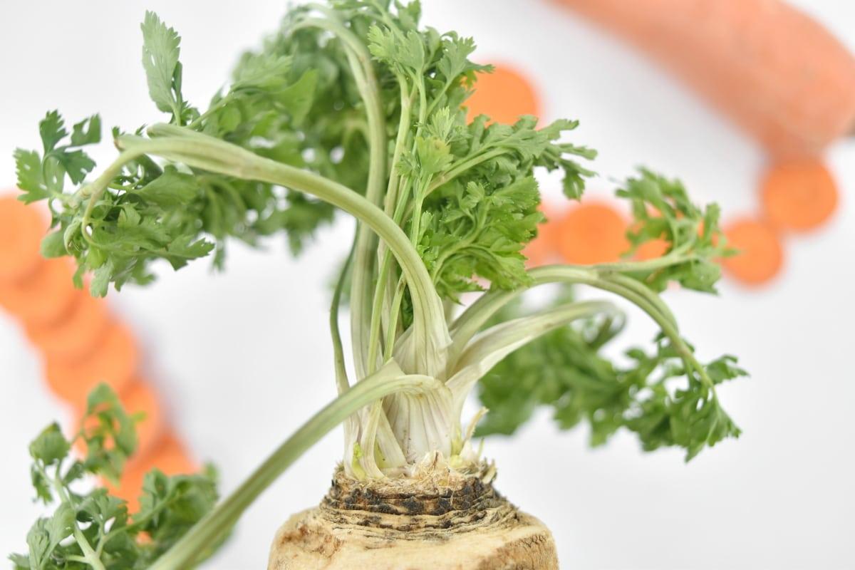 details, vegetables, food, lunch, parsley, vegetable, healthy, ingredients, salad, fresh