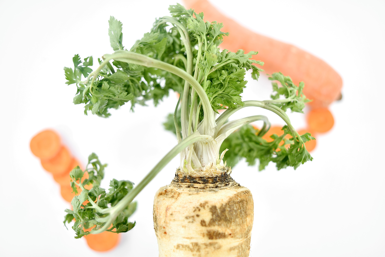 Imagen Gratis Antioxidantes Zanahoria Organica Perejil Raices Saludable Raiz Ensalada Fresco Alimentos Se pueden obtener al matar zombis. pixnio