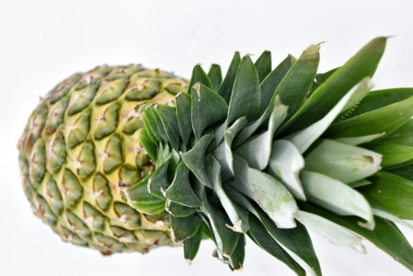 antioxydant, fermer, exotique, alimentaire, fruits, feuille verte, organique, ananas, tropical, plante