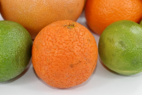 close-up, grapefruit, lemon, mandarin, skin, orange, tangerine, vitamin, citrus, healthy