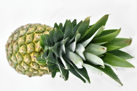 agriculture, pineapple, vitamin, tropical, food, exotic, fruit, upclose, nutrition, herb