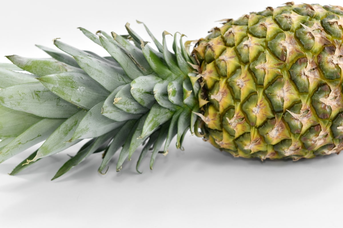 tropical, fruit, food, pineapple, nature, flora, upclose, exotic, leaf, nutrition