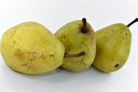 agriculture, organic, pears, produce, yellowish brown, fruit, nutrition, healthy, health, food