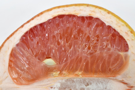 bitter, detail, exotic, grapefruit, slices, tasty, fruit, food, citrus, slice