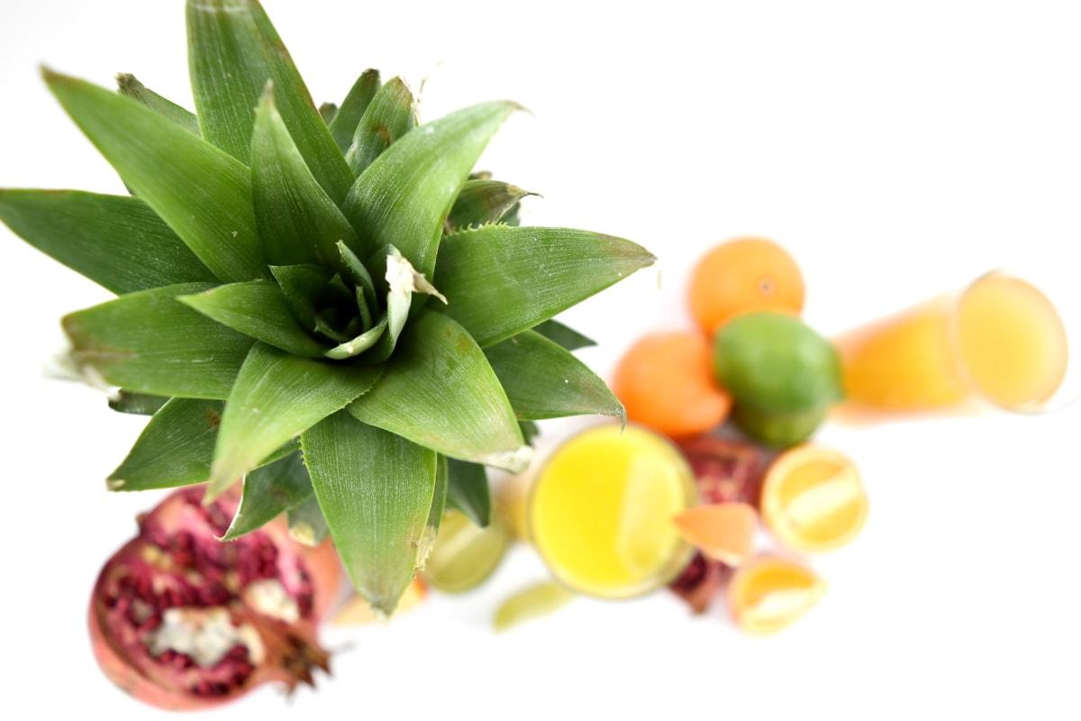 exotiska, fokus, fruktjuice, gröna blad, ananas, tropisk, mat, frukt, färska, blad