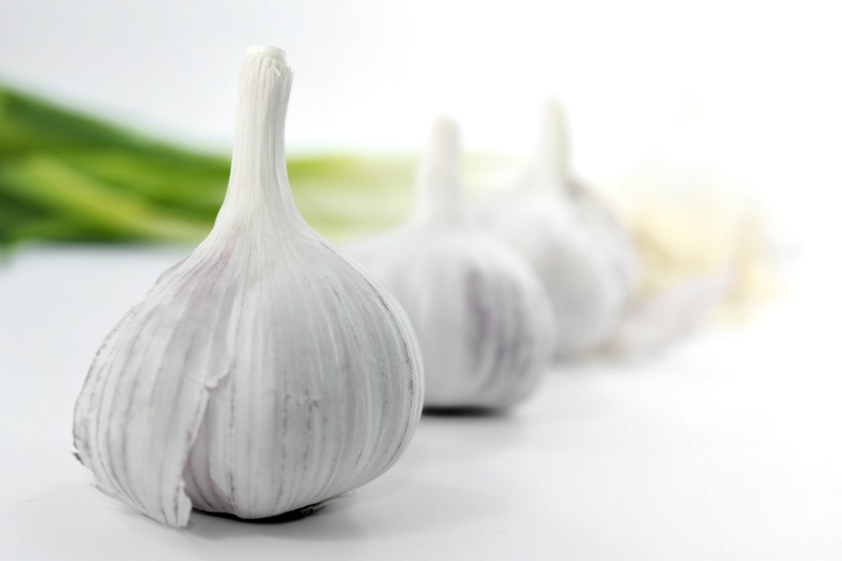 aromatic, close-up, culinary, garlic, spice, organic, food, vegetable, cooking, ingredients
