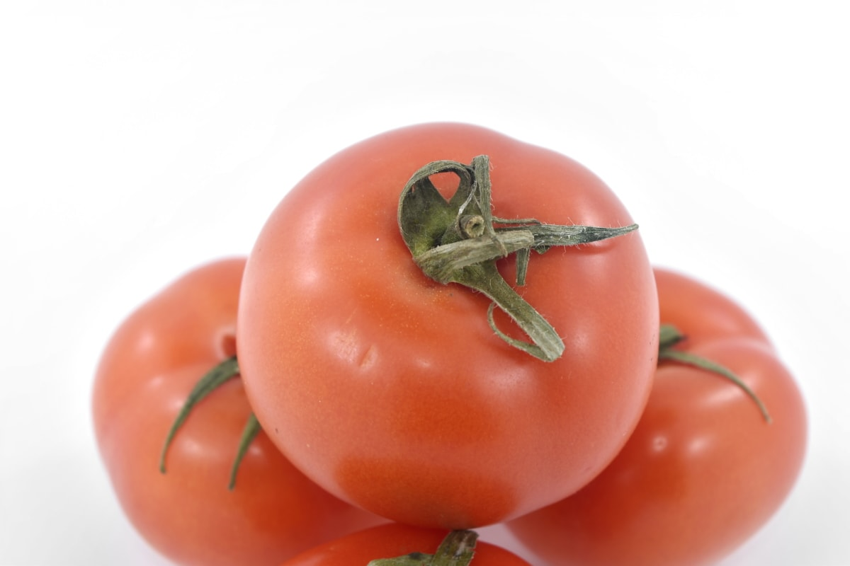 agriculture, produce, tomato, vegetables, tomatoes, nutrition, healthy, food, ingredients, vegetable