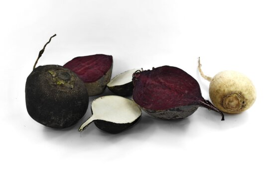 agriculture, antioxidant, beetroot, cross section, radish, roots, food, root, produce, health
