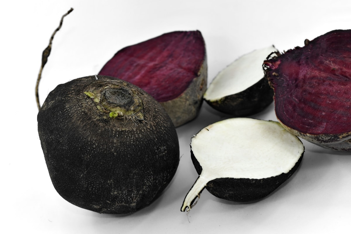 beetroot, black and white, culinary, organic, purple, radish, root, produce, food, health