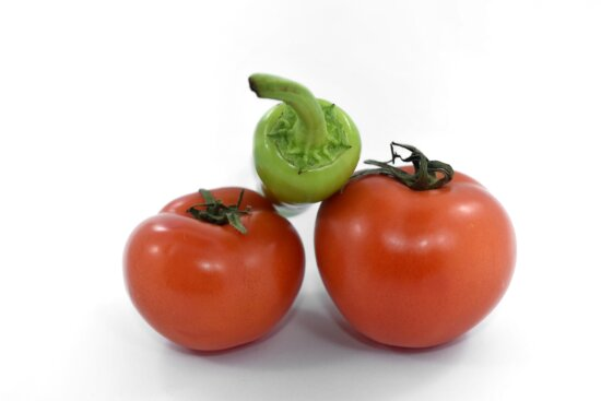 close-up, fresh, pepper, produce, salad, tomatoes, tomato, nutrition, food, vegetable
