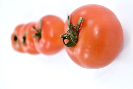 agriculture, close-up, herb, horizontal, products, red, tomatoes, healthy, health, vegetable